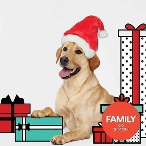 Newport Centre - Promo Spot 3 - Pet Photos With Santa Promo_FAS_PetPhoto.jpg