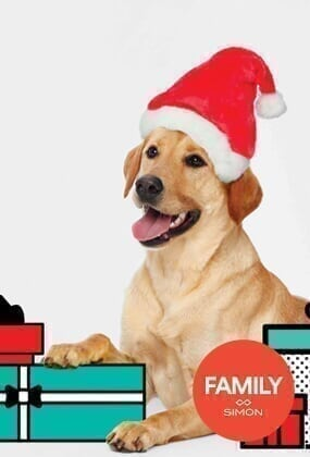Smith Haven Mall - Services Spot - Pet Photos with Santa Services_FAS_PetPhoto.jpg