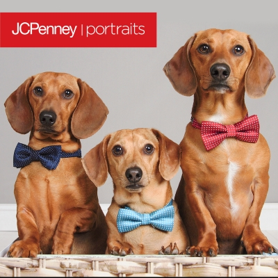 JCPenney Portraits At Battlefield Mall